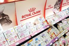 Cash Graines Sud Pollestres vend des aliments pour chats et animaux de compagnie près de Perpignan