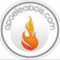 opoeleabois.com est un magasin de vente de poêles à bois à Perpignan qui propose aussi un site de vente en ligne de poêle à bois.