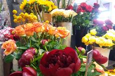 Rev'en Fleurs Cabestany Fleuriste artisan qui réalise des bouquets sur mesure et des décorations florales (® rev en fleurs)