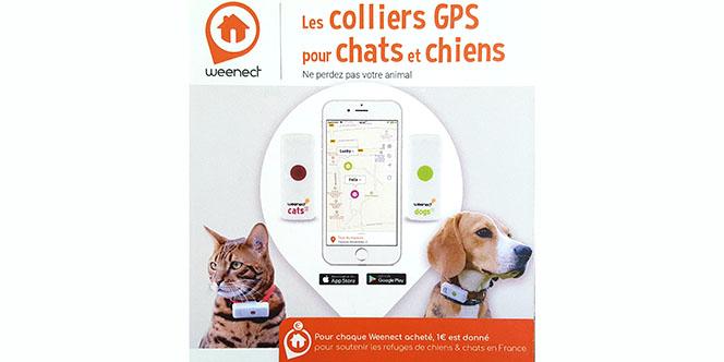 Trouvez le collier GPS pour chien et chat à Perpignan chez Médor et Compagnie au Mas Guérido.