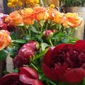 Rev'en Fleurs Cabestany Fleuriste près de Perpignan annonce des Promos chaque jour